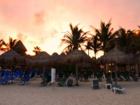 Beauty of Playa del Carmen