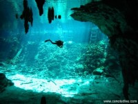 Magic Mayan Cave ©cenotedive.com