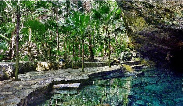 Cenotes in the Yucatan Peninsula