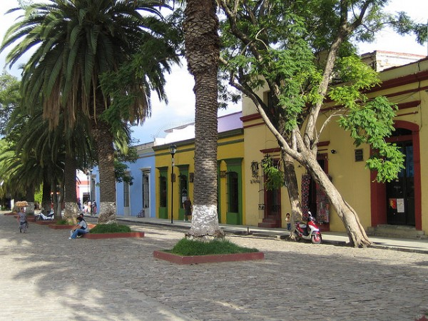 The city of Oaxaca