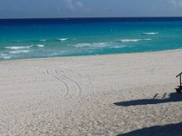Spirit Airline flight from Fort Lauderdale to Cancun from $243